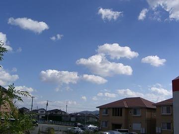 2006_016