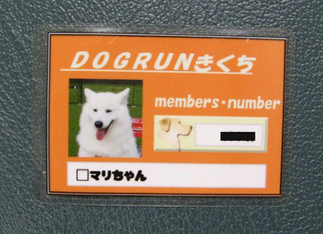 2007_003_15