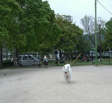 2007_023_4